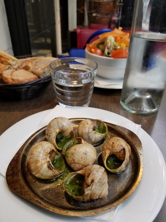 Solo Snail Lunch